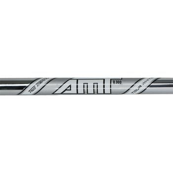Dynamic Gold AMT Tour White Iron Shaft 5-PW ( 6pcs )