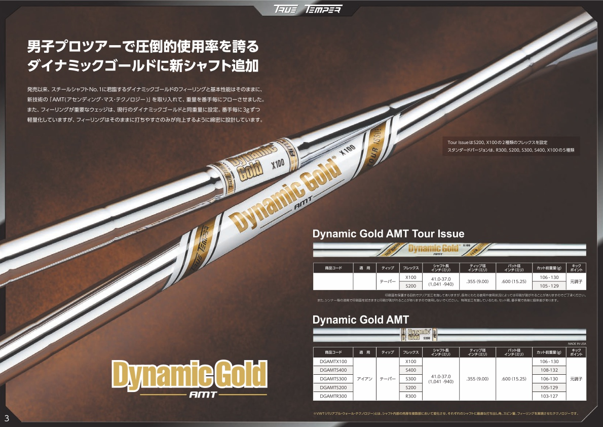 True Temper Dynamic Gold AMT Iron Shaft